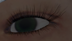 File:017_Brows_Result.png